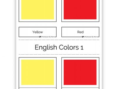 3 Part Color Cards English